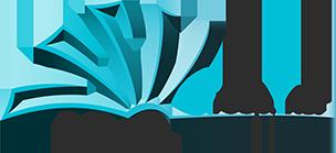 Logo-VNS-Group-Inc